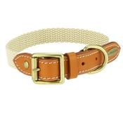 Clementine est. Dogs - Astor Webbing Dog Collar – Orange