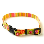 Yellow Dog - Green Bouquet Collar with Stripes