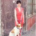 Blue Geo Hands-free Dog Lead 2