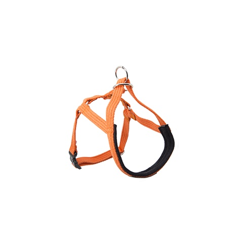 Ami Play Cotton Halter Harness - Orange