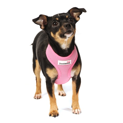 Airmesh Dog Harness – Pink 4