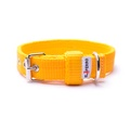 Double Dog Collar – Yellow