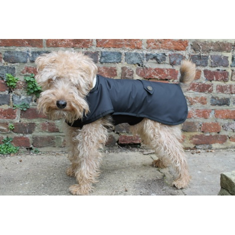 Standard Underbelly Dog Coat 3