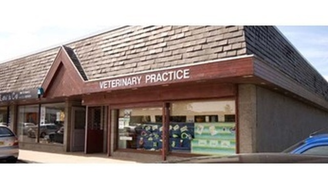 Ardene House Veterinary Practice