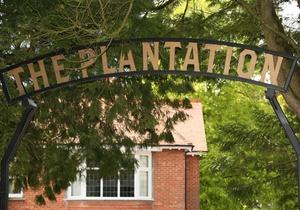 The Plantation, Dorset 2