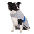 Darcy Tweed Dog Coat