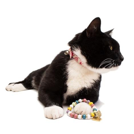 Pink Geo Cat Collar 3