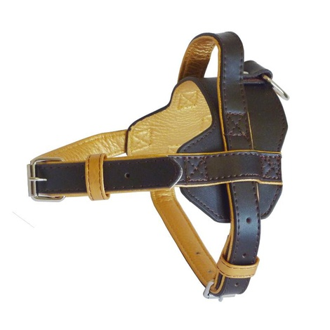 Colour Fusion Leather Harness – Brown
