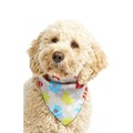 Shape Shifter Dog Bandana - Grey