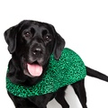 Personalised Green Leopard Print Dog Coat 6