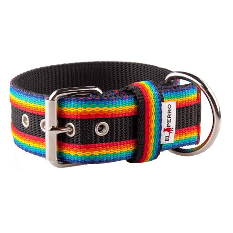 Juicy Strip Dog Collar - Rainbow