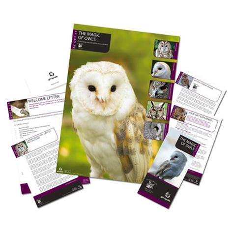 Adopt An Owl Gift Box 2