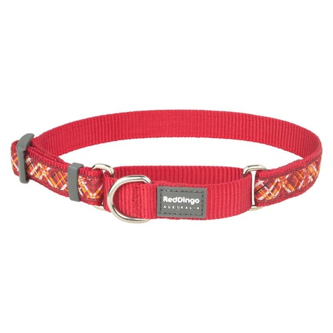 Flanno Martingale Dog Collar – Red