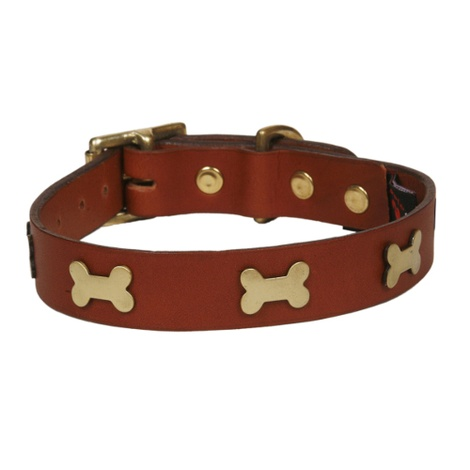 Bones Studs Leather Collar - Tan