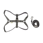 Bowl&Bone Republic - Active Dog Harness & Lead Set - Grey
