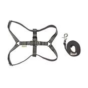 Bowl&Bone Republic - Active Dog Harness & Lead Set - Grey
