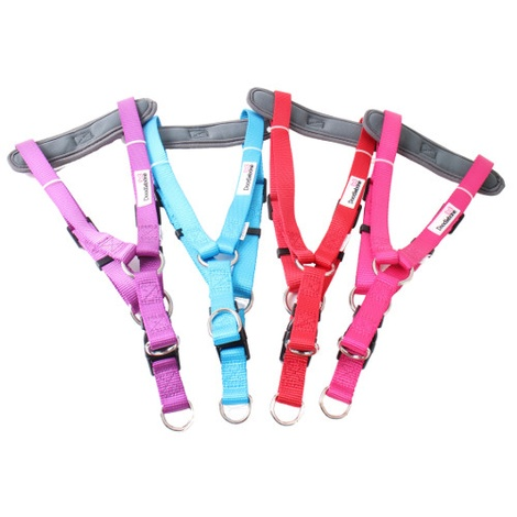 Padded Bold Harness - Red 2