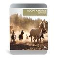 Adopt A Horse Gift Box