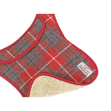 Hoxton Tartan Harris Tweed Dog Coat 3