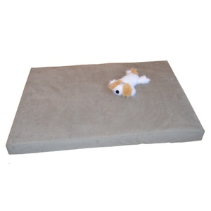 Foam Dog Bed - Sage
