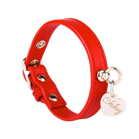 Red and Silver Leather Collar