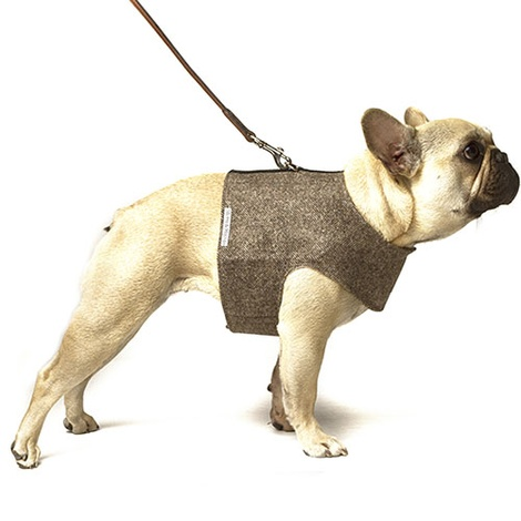 Herringbone Tweed Dog Harness