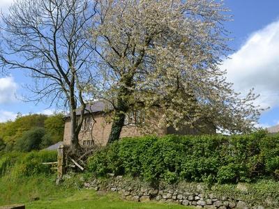 Paddock Cottage, Northumberland, Alnwick