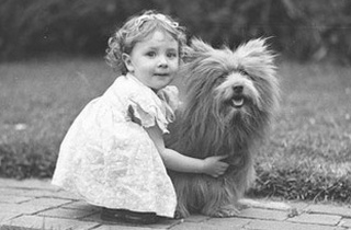 10 Reasons Why Pets Are Good For Children