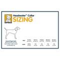 Headwater Dog Collar – Blue Spring 3