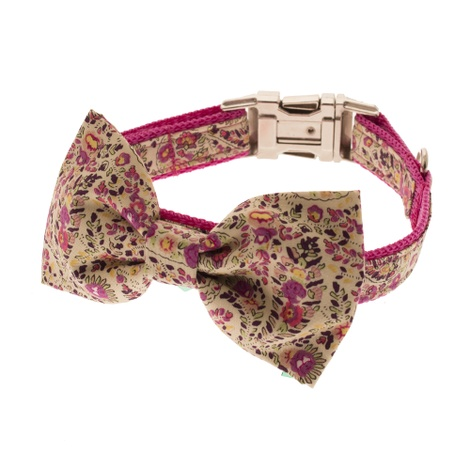 Pink Paisley Dog Collar