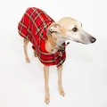 Personalised Red Tartan Sighthound Coat 3