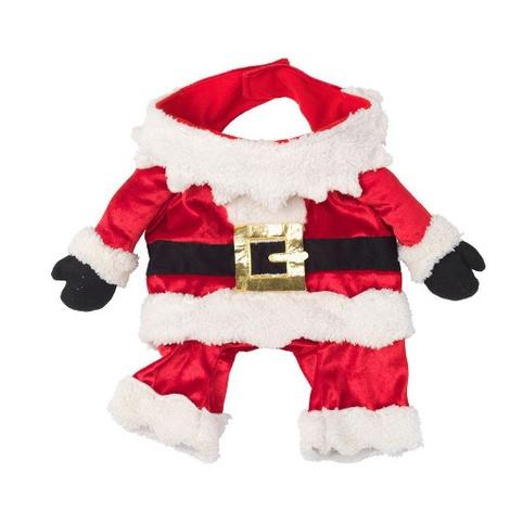 Santa Fancy Dress