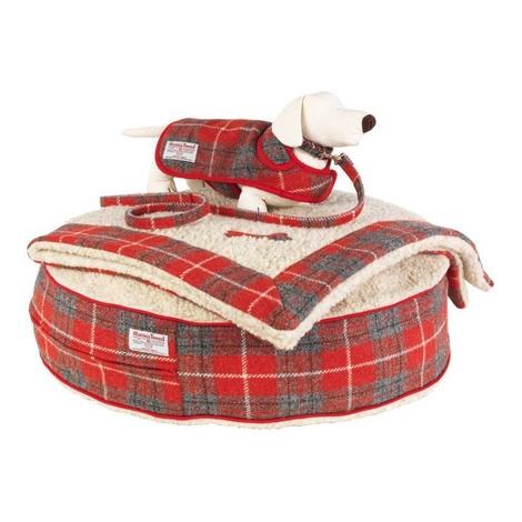 Hoxton Tartan Harris Tweed Dog Blanket 2