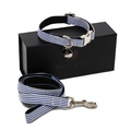 Collar & Lead Set - Chichester