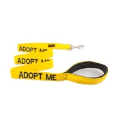 Friendly Pet Collars - Yellow Adopt Me Lead
