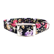 Ditsy Pet - Nancy Buckle Dog Collar