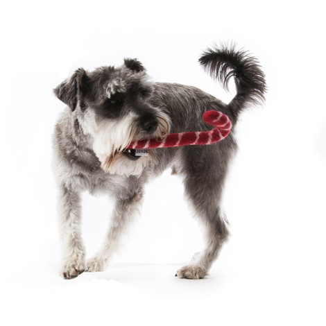 Wool Candy Cane Dog Toy 3