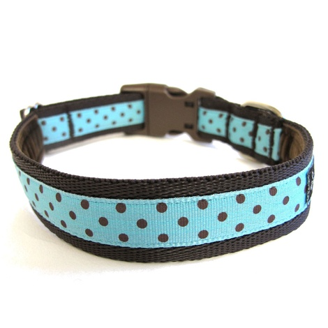 Classic Brown on Aqua Polka Dots Dog Collar 2