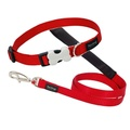 Red Collar & Lead