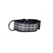 Pet Pooch Boutique - Wesley Dog Collar
