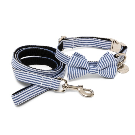 Bow Tie & Lead Set - Chichester 2