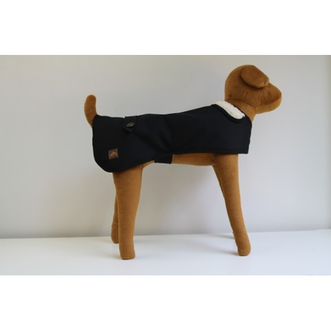 Bold in Black Dog Coat 3