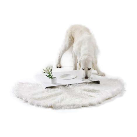 Room Service Dog Bowls & Tray 2