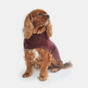 Minkeys Tweed - Frisbee Tweed Dog Coat