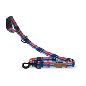 Dublin Dog - EcoLucks Dog Lead – Hamptons Harbour