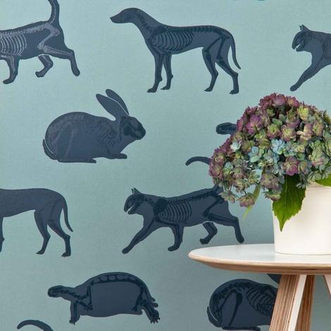 Animal Magic Wallpaper 2