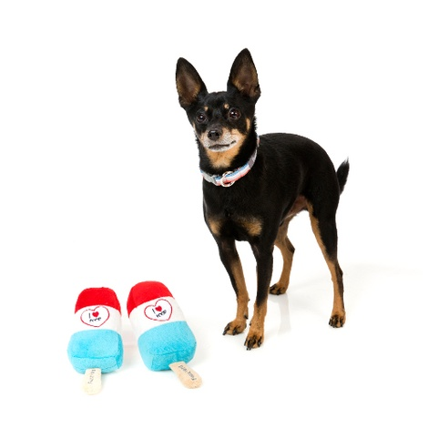 Plush Popsicle Dog Toy 2