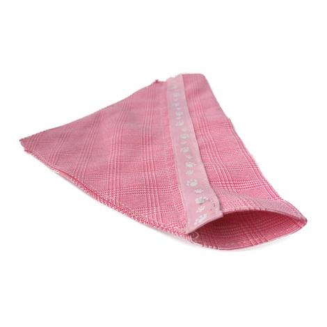 Pink Paw Indiana Dog Bandana 2