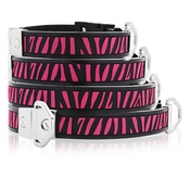 Cool Dog Club - Cool Dog K9 Striker MK2 Zebra Dog Collar