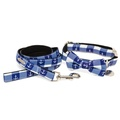 The New Anglesey Collar and Lead Set 2